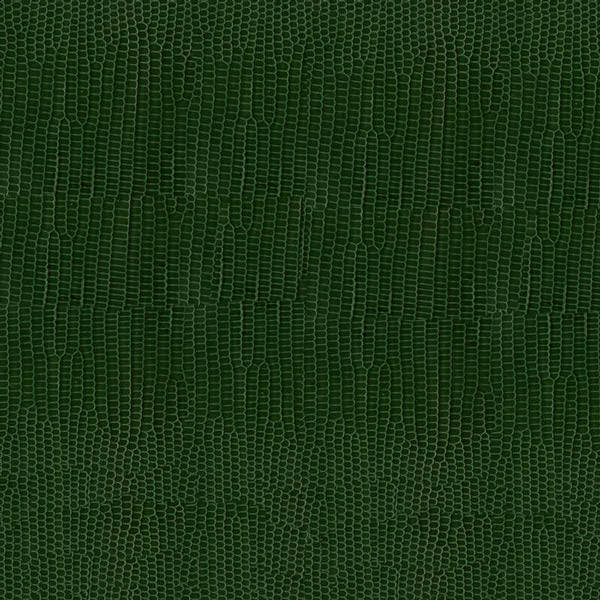 Launer request leather swatch green lizard