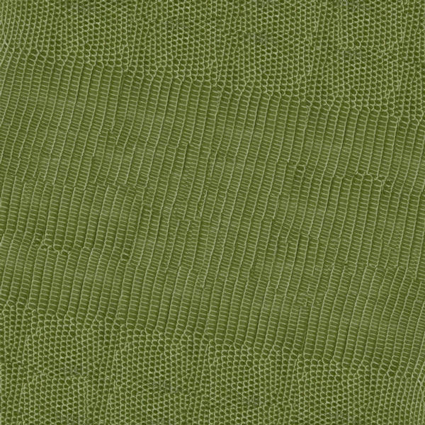 Launer request leather swatch olive lizard